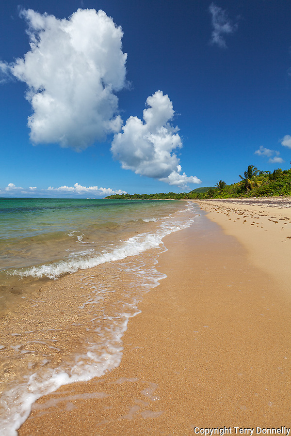 Vieques, Puerto Rico<br /> A long and open sandy beach near Pt. Caballo with puffy cumulus clouds