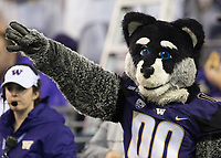 Harry the Husky signals a first down.