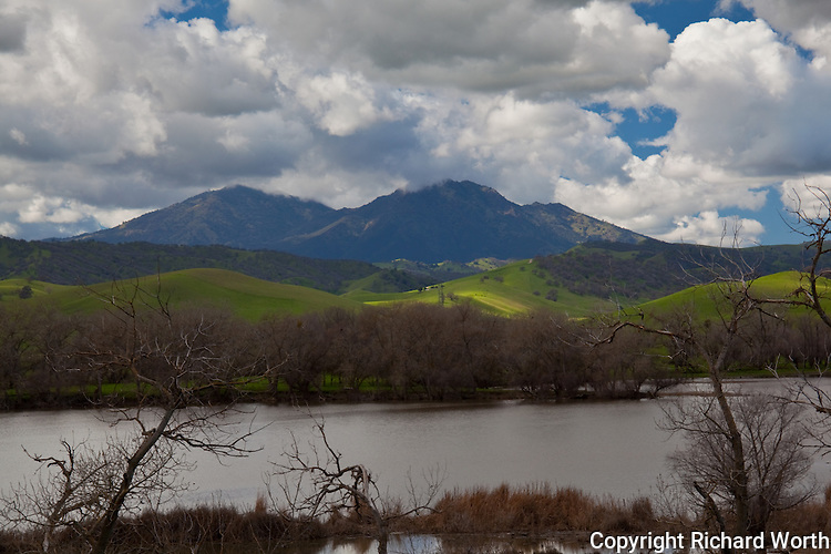 Mount Diablo rises in the background with March Creek Dam and its winter-bare trees lie in the foreground.