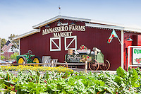 The Original Manassero Farms Market Irvine