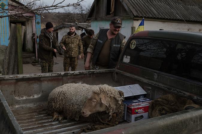 Freiwillige versorgen die Einheit mit Essen. Um den Empfang der ukrainischen Militärpässe zu feiern bekommt die Legion ein Schaf.