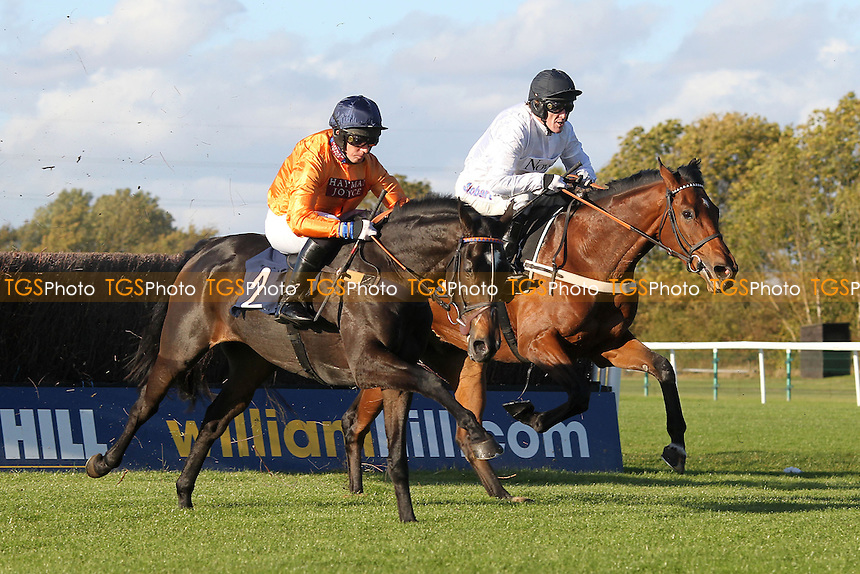 Race winner Hildisvini ridden by Noel Fehily (L) jumps alongside Tour D'Argent ridden by A P McCoy in the SWI Ltd Electrical Contractors Beginners Chase - Horse Racing at Huntingdon Racecourse, Cambridgeshire - 16/10/12 - MANDATORY CREDIT: Gavin Ellis/TGSPHOTO - Self billing applies where appropriate - 0845 094 6026 - contact@tgsphoto.co.uk - NO UNPAID USE