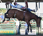 Shane O'Connel rides in the Bareback Bronc Riding event during the Reno Rodeo on Sunday, June 23, 2019.