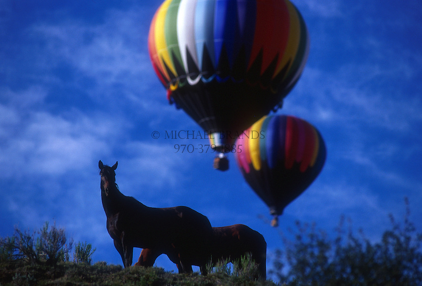 Horses and hot air balloons near Snowmass Village, Colorado. © Michael Brands. 970-379-1885.