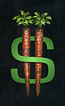 Illustration of carrots on dollar sign representing incentives