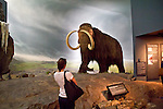 Victoria, British Columbia, Vancouver Island, Royal British Columbia Museum, wildlife dioramas, Wooly Mammoth,