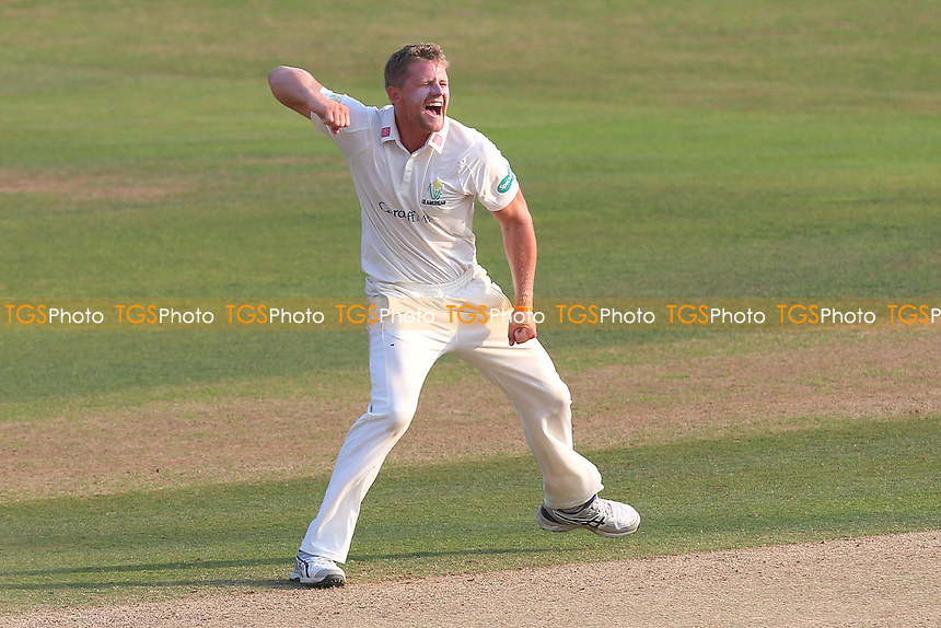 Craig Meschede of Glamorgan celebrates taking the wicket of Graham Napier during Essex CCC vs Glamorgan CCC, Specsavers County Championship Division 2 Cricket at the Essex County Ground on 15th September 2016