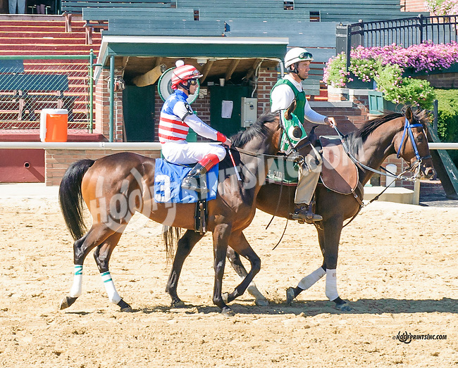 Precisely before The Longines Gentlemans International Fegentri race at Delaware Park on 9/14/15 - Mr. Christopher Ortiz aboard