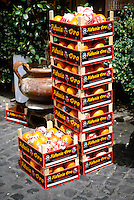 FRUITS - VEGETABLES<br />