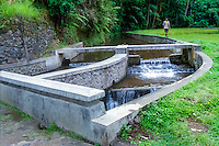 Bali, Gianyar, Gunung Kawi. Water for irrigation of rice fields on Bali. The watersystem is always managed by the farmer with the lowest fields, in that way all the farmers are guaranteed a regular waterflow.