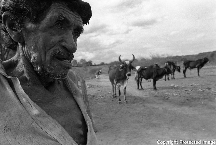 Sertanejo, inlander, dweller of the Northeast Brazil back country herds cattle, Paraiba State Sertão, Brazil.