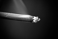 Clove Cigarette Smoking with ash tip in Black and White