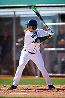 Dartmouth Big Green shortstop Thomas Roulis (13) at bat during a game against the Iowa Hawkeyes on February 27, 2016 at South Charlotte Regional Park in Punta Gorda, Florida.  Iowa defeated Dartmouth 4-1.  (Mike Janes/Four Seam Images)