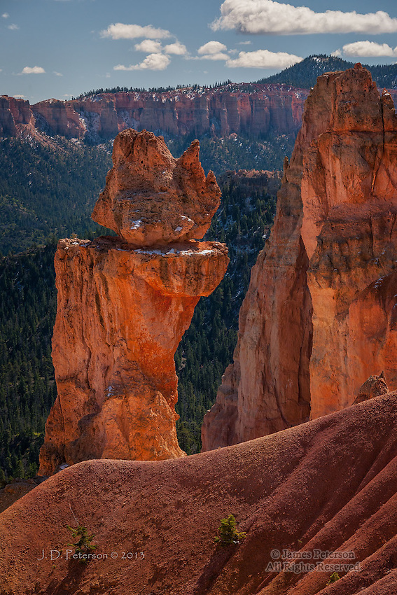 Trailside Pillars, Bryce Canyon, Utah