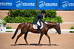 Maria Pinedo Sendagora. Carriem van Colen Z. ESP. Eventing Dressage. Day 3. World Equestrian Games. WEG 2018 Tryon. North Carolina. USA. 13/09/2018. ~ MANDATORY Credit Elli Birch/Sportinpictures - NO UNAUTHORISED USE - 07837 394578