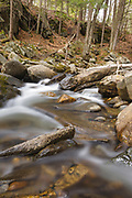 Cockermouth River during the spring months in Groton, New Hampshire USA