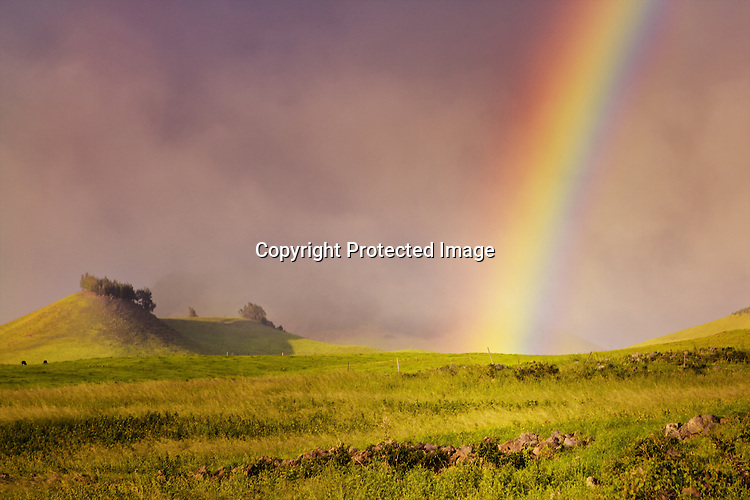 Rainbow on Kohala Mountain while riding horseback at Paniolo Adventures.