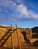 Mesa Verde National Park, CO<br /> Ladder and walls of Far View Ruins under morning clouds