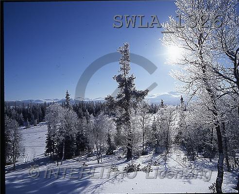 Carl, CHRISTMAS LANDSCAPE, photos, winterlandscape(SWLA1326,#XL#) Landschaften, Weihnachten, paisajes, Navidad