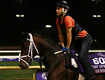 November 01, 2018 : Hembree in preparation for the Breeders' Cup on November 01, 2018 in Louisville, KY.  Candice Chavez/ESW/CSM