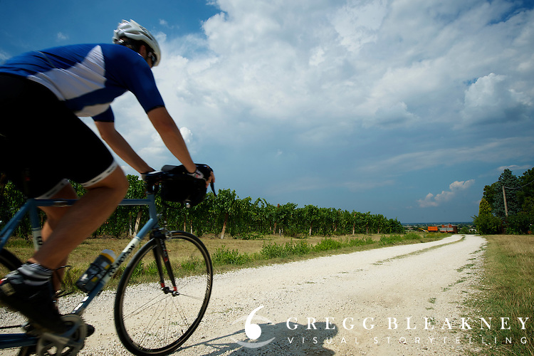 A cyclist on the Sangiovese di Romagna Wine Trail and white gravel Strade Bianche roads near Faenza, Italy