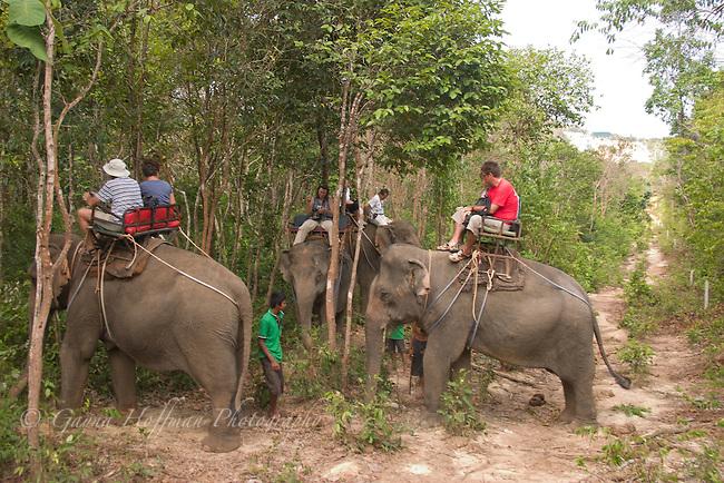 Elephant trekking. Koh Lanta, Thailand.