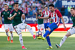 Alex Berenguer of Club Atletico Osasuna competes for the ball with Nico Gaitan of Atletico de Madrid during the match of La Liga between  Atletico de Madrid and Club Atletico Osasuna at Vicente Calderon  Stadium  in Madrid, Spain. April 15, 2017. (ALTERPHOTOS / Rodrigo Jimenez)