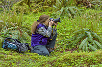 Pat Leeson, May 2017, Hoh River Rainforest, Olympic National Park, WA.
