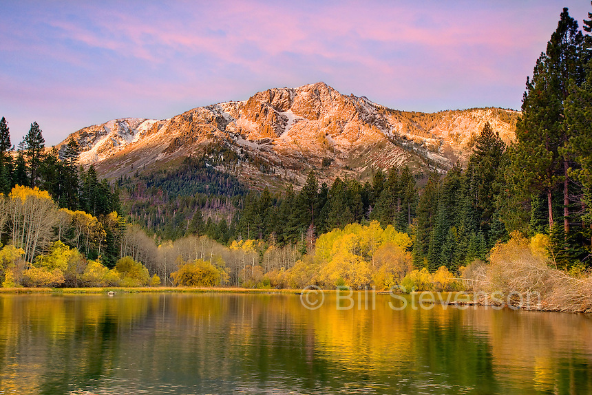A picture of Mount Tallac, Fallen Leaf Lake and yellow aspen trees at sunrise. Tallac is one of the landmarks of Lake Tahoe's south shore. It rises to an elevation of 9735 feet. It is a very popular hike in the summer and a popular ski in the winter.