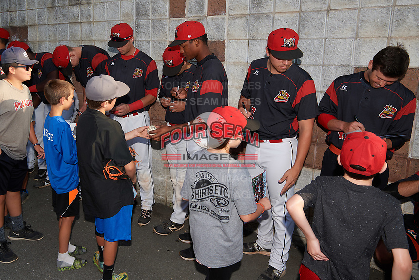 Batavia Muckdogs players Remey Reed (32), Tyler Curtis (11), Michael Hernandez (4), Brayan Hernandez (41), Alex Mateo (37), and Harrison White (40) sign autographs before a game against the Mahoning Valley Scrappers on August 30, 2017 at Dwyer Stadium in Batavia, New York.  Batavia defeated Mahoning Valley 5-1.  (Mike Janes/Four Seam Images)