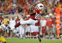 Aug. 28, 2009; Glendale, AZ, USA; Arizona Cardinals wide receiver Early Doucet catches a pass against the Green Bay Packers during a preseason game at University of Phoenix Stadium. Mandatory Credit: Mark J. Rebilas-