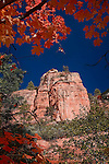 Monolith and Maples, West Fork of Oak Creek Canyon, Arizona