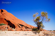 Image Ref: CA664<br />