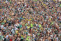 SAO PAULO, SP, 02.02.2014 - CAMP. PAULISTA - PALMEIRAS X SAO PAULO -  Torcedores do Palmeiras durante partida contra o Sao Paulo valida pelo Campeonato Paulista, no Estadio Paulo Machado de Carvalho, o Pacaembu, na regiao oeste de Sao Paulo, neste domingo, 02. (Foto: William Volcov / Brazil Photo Press).