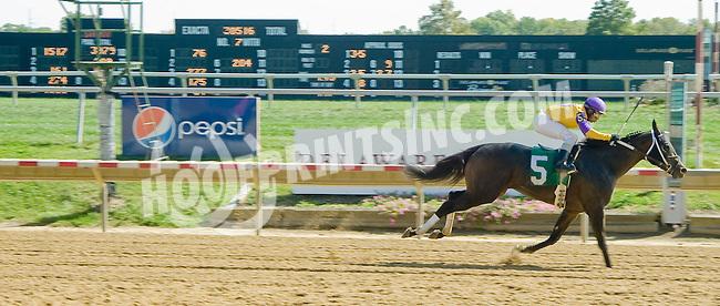Brassy Boy winning at Delaware Park on 10/1/12