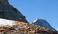 Capitol Peak (right) from the ridgeline between Mt. Daly and Capitol Peak, near Snowmass, Colorado
