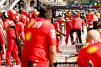 14th November 2019, Autodromo Jose Carlos,Pace, Sao Paolo, Brazil; F1 Grand Prix of Brazil, Driver arrival and Press conference; Sebastian Vettel GER, Scuderia Ferrari Mission Winnow rides his push bike into the pit lane surrounded by technical team