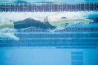 Picture by Allan McKenzie/SWpix.com - 16/12/2017 - Swimming - Swim England Nationals - Swim England Winter Championships - Ponds Forge International Sports Centre, Sheffield, England -