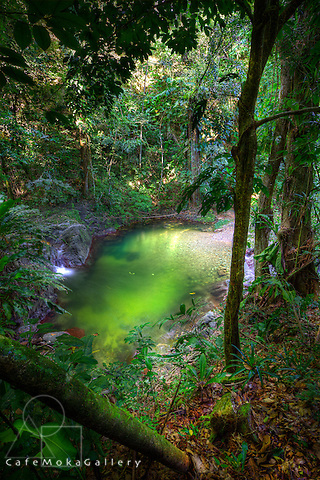Parlatuvier river and green pool in Tobago