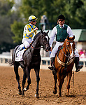 October 07 2018 : Strike Silver with Julien Leparoux up wins the Indian Summer States at Keeneland Racecourse on October 07, 2018 in Lexington, Kentucky. Evers/ESW/CSM