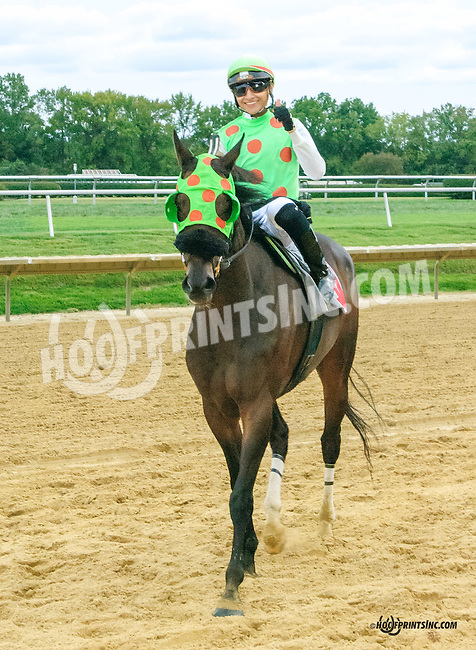 Capital Fellow winning in at Delaware Park on 9/25/15
