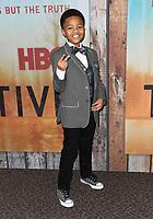 10 January 2019 - Hollywood, California - Isaiah C. Morgan. &quot;True Detective&quot; third season premiere held at Directors Guild of America.   <br /> CAP/ADM/BT<br /> &copy;BT/ADM/Capital Pictures