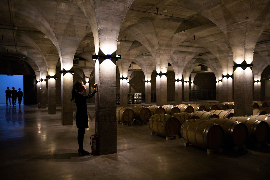 China - Ningxia - Wine cellar of Chateau Copower Jade, on the outskirts of Yinchuan. The 80-hectare-vineyard and the winery&rsquo;s modern structure cost 19 million euros and won the 2018 RVF Wine Design Award. <br />