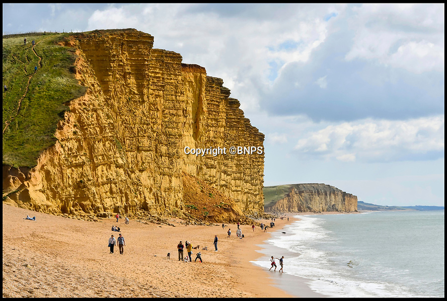 BNPS.co.uk (01202 558833)Pic:  BNPS<br /> <br /> The cliffs at West Bay, Dorset.<br /> <br /> Broadchurch star Pauline Quirke is selling her seaside flat in the exclusive complex that doubled as the police station in the hit TV crime drama.<br /> <br /> The London actress bought the penthouse apartment in West Bay, Dorset, during the filming of the second season of Broadchurch in 2014.<br /> <br /> Quirke, 59, played the shifty character of Susan Wright in the ITV whodunnit series that was based in the seaside town.<br /> <br /> She has used the flat as a holiday home since then but has now put its on the market.