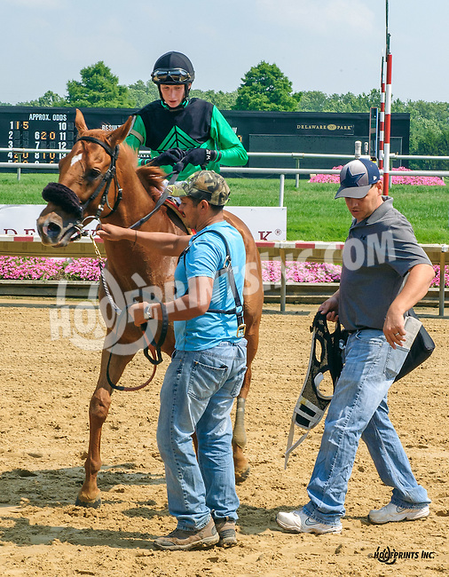 Solidario winning at Delaware Park on 7/1/15