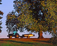 Tractor under chestnut tree in Yamhill County, Oregon