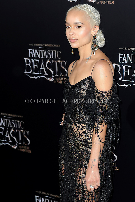 www.acepixs.com<br /> November 10, 2016  New York City<br /> <br /> Zoe Kravitz attending the 'Fantastic Beasts And Where To Find Them' World Premiere at Alice Tully Hall, Lincoln Center on November 10, 2016 in New York City.<br /> <br /> <br /> Credit: Kristin Callahan/ACE Pictures<br /> <br /> <br /> Tel: 646 769 0430<br /> Email: info@acepixs.com
