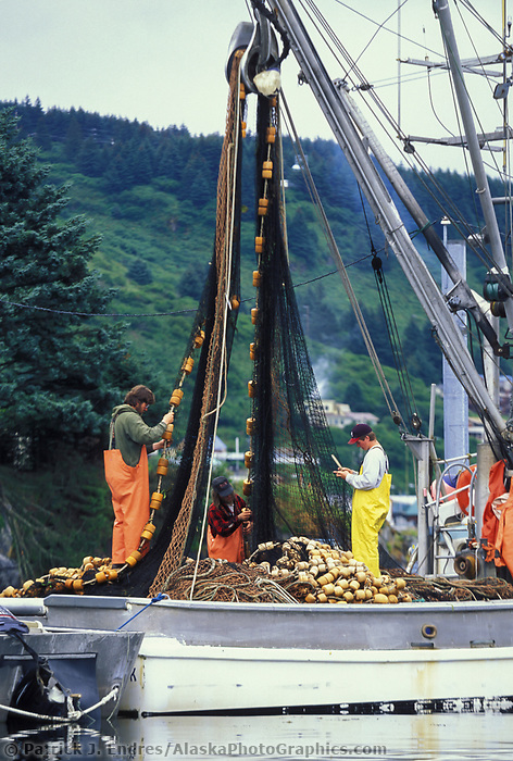 Commercial fishermen mend seine net in Kodiak harbor, Alaska.