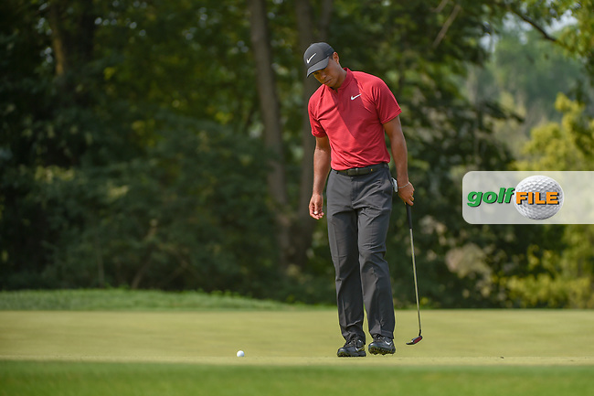 Tiger Woods (USA) looks over his putt on 9 during 4th round of the 100th PGA Championship at Bellerive Country Club, St. Louis, Missouri. 8/12/2018.<br /> Picture: Golffile | Ken Murray<br /> <br /> All photo usage must carry mandatory copyright credit (© Golffile | Ken Murray)