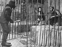 Planet of the Apes (1968) <br /> Buck Kartalian, Linda Harrison &amp; Charlton Heston<br /> *Filmstill - Editorial Use Only*<br /> CAP/KFS<br /> Image supplied by Capital Pictures